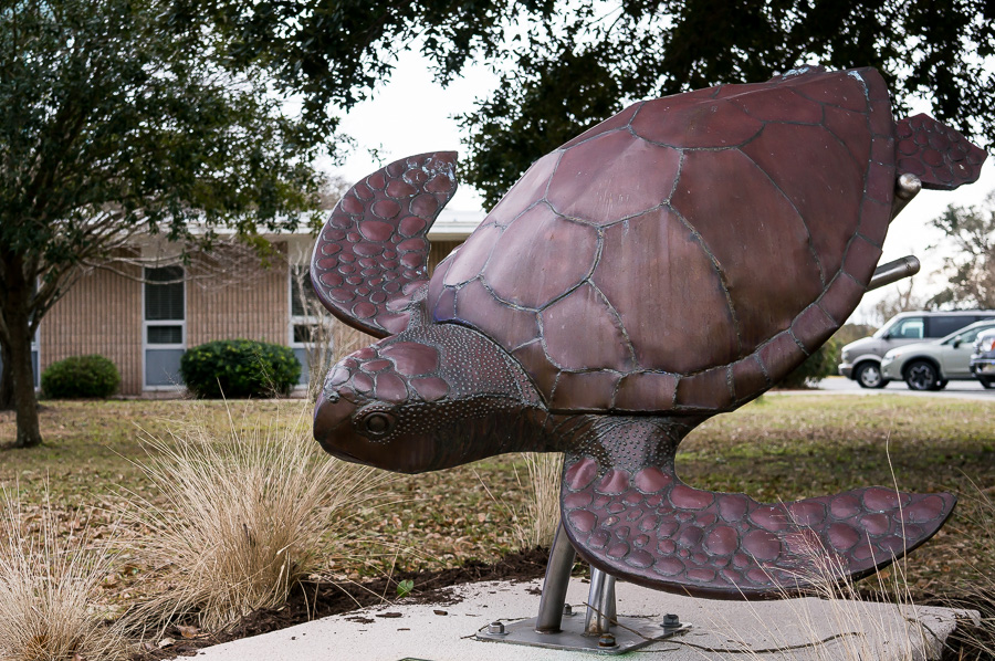 Sea Turtle Sculpture