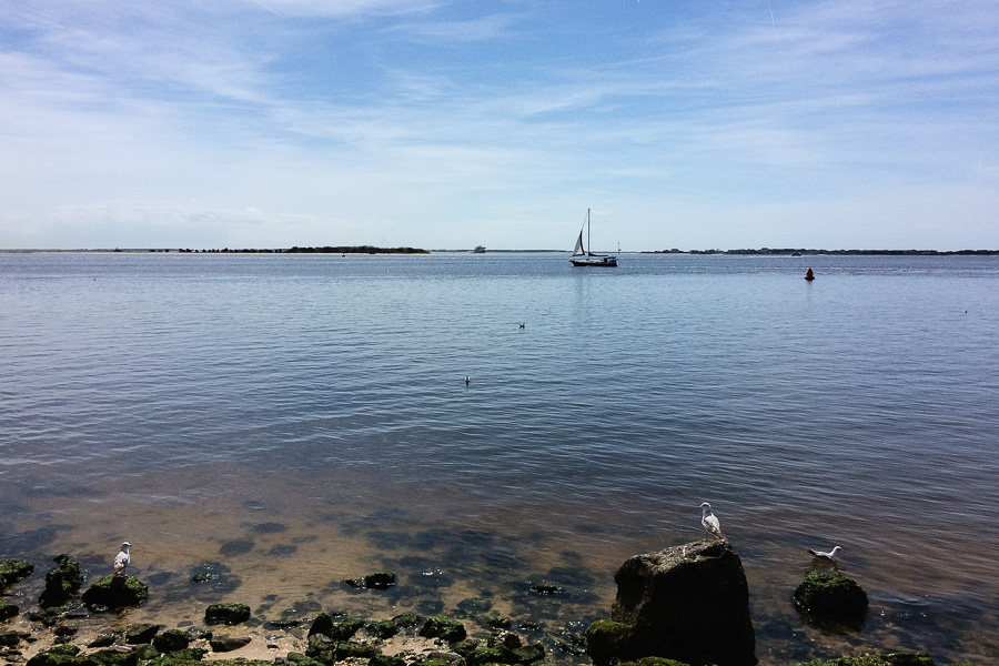 Cape Fear River at Lunch