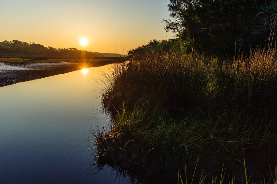 Sunrise of the wetlands
