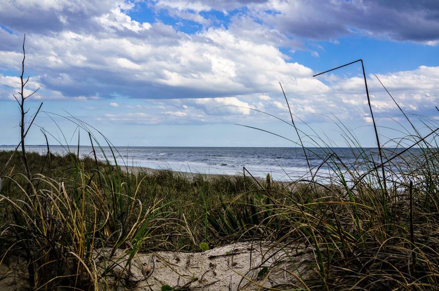 Through the dunes