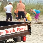 Day 178 Project 366 – Sea Turtle Patrol