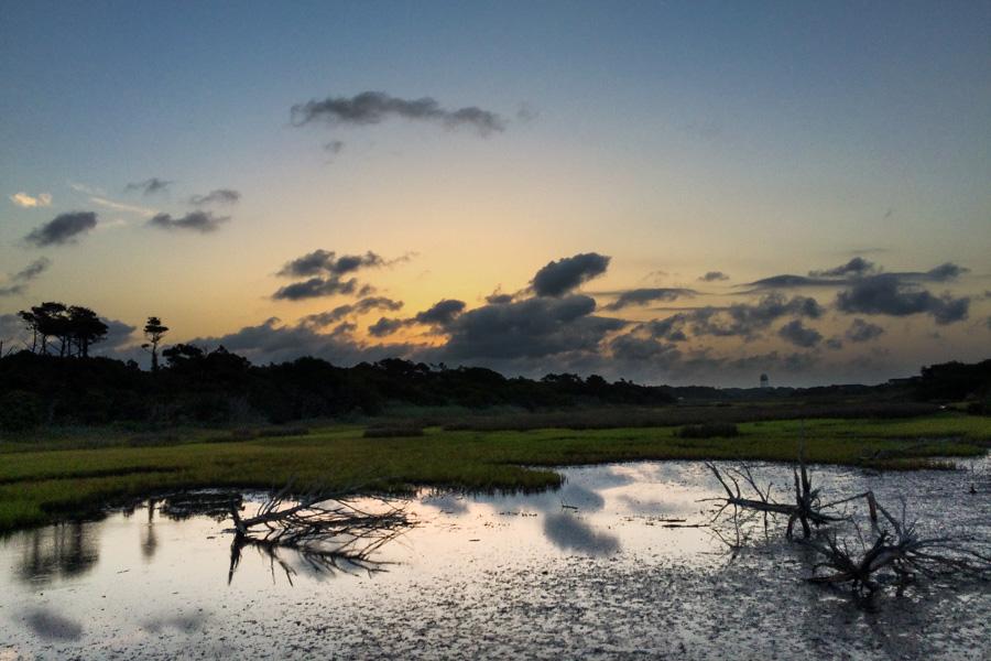 Marsh pre-sunrise