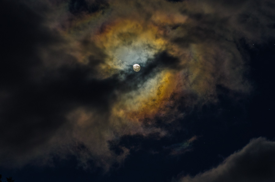 Moon Halo in the Clouds