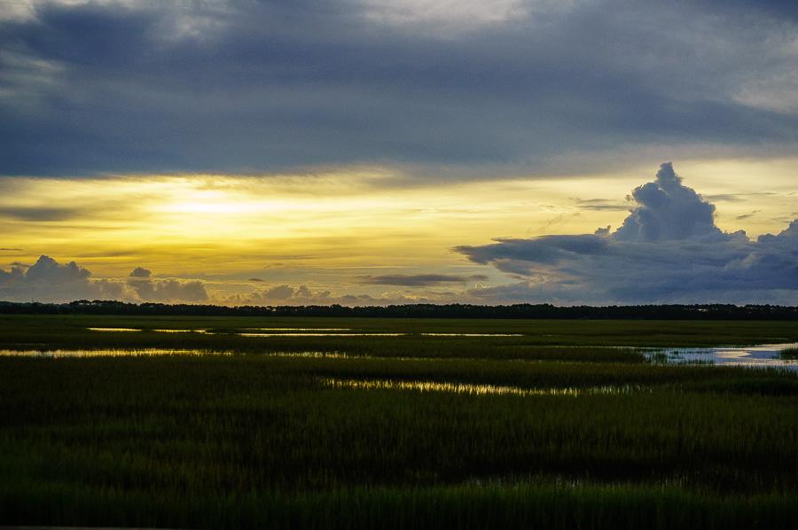 Good Morning Wetlands