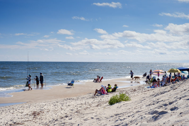 A beach scene with people fishing, people under umbrellas, people sun bathing and some one walking their dog.