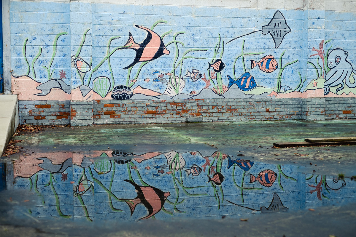 An underwater mural and its reflection in the a water puddle in front